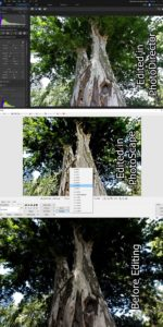Editing Light Levels