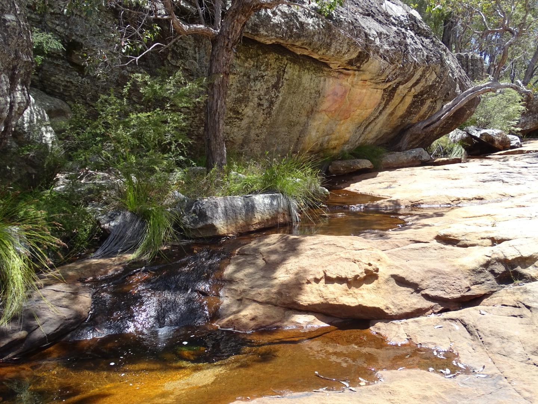 creek flowing over rock