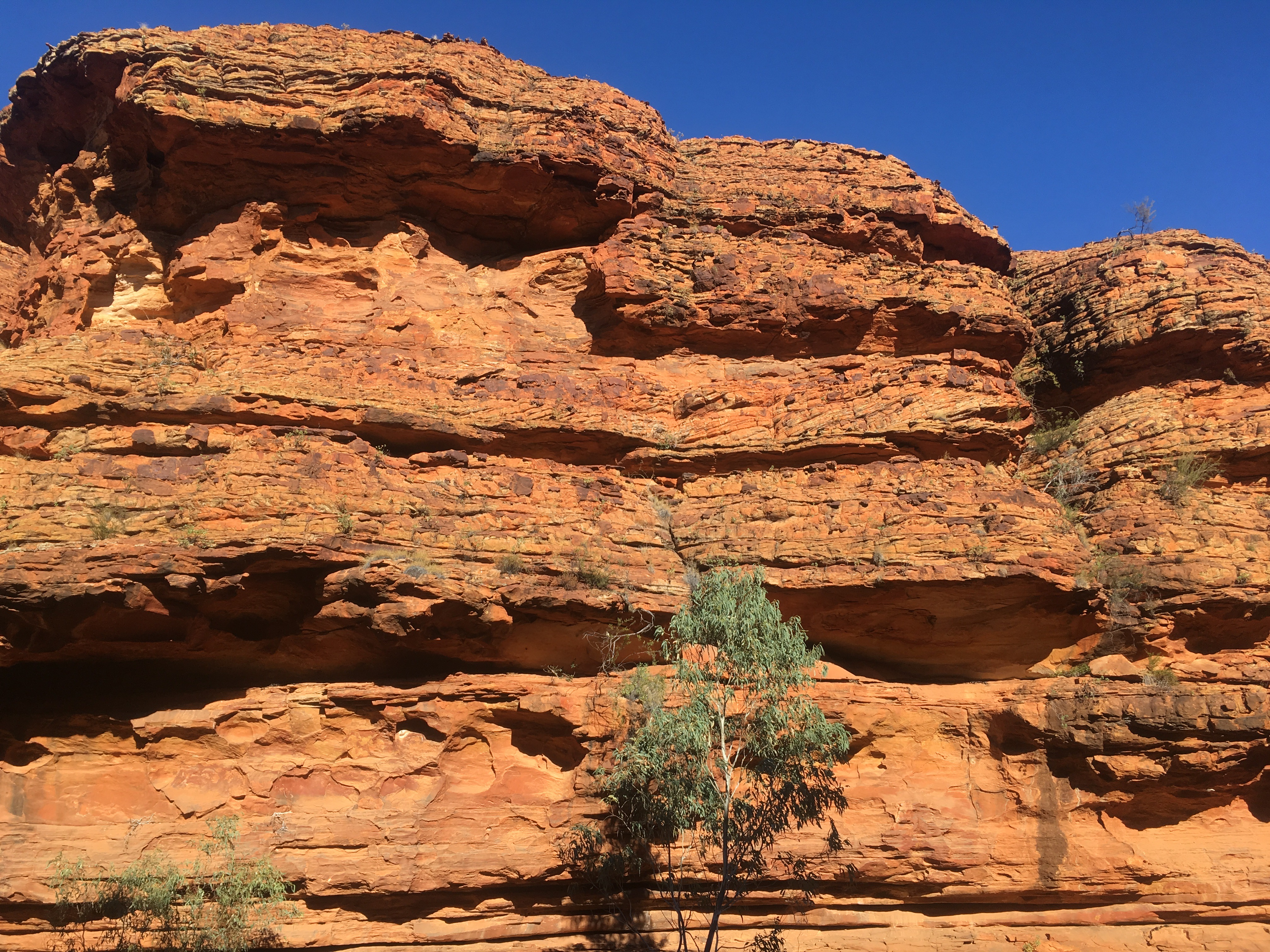 red coloured cliffs