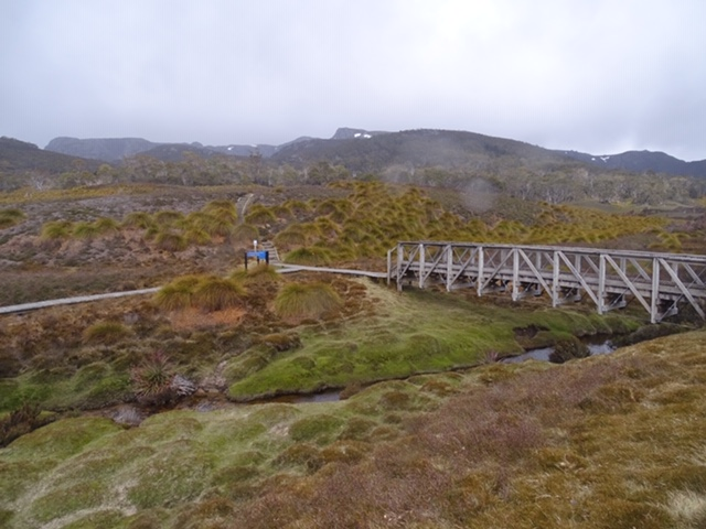 Bridge at Cradle Mountain Tasmania