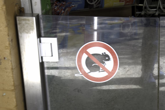 No Quokkas Sign